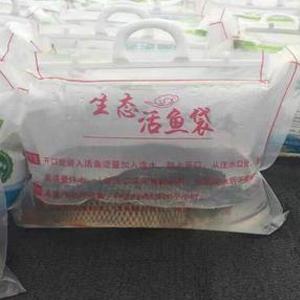 活鱼充氧气包装效果